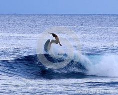 Surfer - Download From Over 26 Million High Quality Stock Photos, Images, Vectors. Sign up for FREE today. Image: 44970070