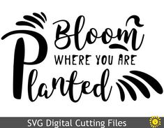 https://www.etsy.com/ca/listing/579161560/svg-cutting-files-templates-bloom-where?ref=shop_home_active_4