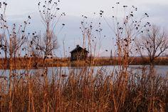 Cabin in Prairie by kendoman26, via Flickr