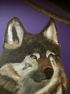 Strikingly beautiful wolf on a purple background. For Lackland.