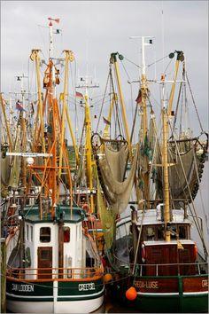 Nordsee,   Krabbennetze,   Kutter,   schiffe,   Fischerhafen,  Krabbenkutter,  Netze,  fischerboote,    Greetsiel,  Ostfriesland,  Hafen,  Hafenbecken,   Anleger,   Krabbenfischer,   Meer,   fischerdorf,   Krabben,   Dorf,   Fischerei,   boote,   Kai,  Häfen,   Schiffe