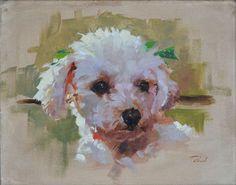 Patrick Saunders Fine Arts - Dog Portrait - Painting - Oil on Canvas - Bernie's Poodle