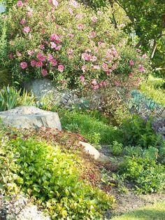 Aménagement pour un impressionnant jardin de rocaille