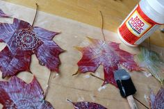 Fall Leaf Drawing and Doodling - sealed with PVA to make it stronger - could be part of a mobile or for links to Fredrick Mc Cubbin and his leaf paintings during the first world war.