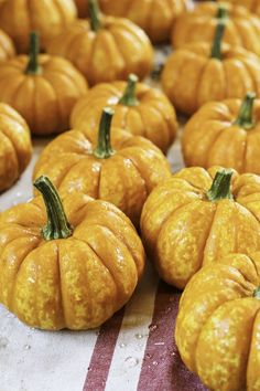 Make those pumpkins and gourds last through the season longer, with this easy to do method. #DIY