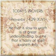 Proverbs 14:29 KJV