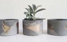 FUME's concrete jars or concrete planters can be used to style your home or office. Diy Cement Planters, Concrete Pots, Concrete Crafts, Concrete Projects, Wall Planters, Succulent Planters, Succulents Garden, Concrete Candle Holders, Diy Candle Holders
