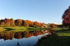 Reflection of NJ