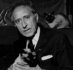 """""""Si yo prefiero los gatos a los perros es porque no hay gatos policías."""" -Jean Cocteau"""