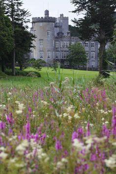 Dromoland Castle, County Clare, Ireland by Pierre Leclerc.