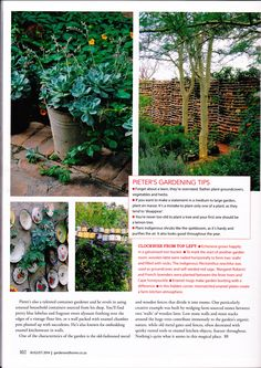 Garden & Home magazine August Keeping it Country. August 2014, House And Home Magazine, Stepping Stones, Home And Garden, Outdoor Structures, Country, Outdoor Decor, Home Decor, Stair Risers