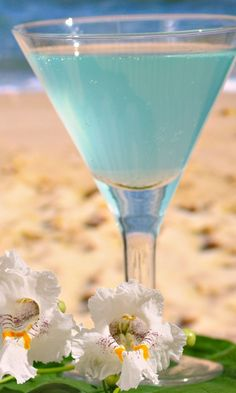 960 Summer Beach Cocktail L