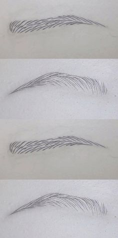 - The World of Makeup Mircoblading Eyebrows, How To Draw Eyebrows, Permanent Makeup Eyebrows, Semi Permanent Makeup, Eyebrow Makeup, Eyebrow Tinting, Eyebrow Shaper, Black Smokey Eye Makeup, Eyeliner Techniques