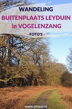 Ik maakte een wandeling over Buitenplaats Leyduin in Vogelenzang. De foto's die ik tijdens deze wandeling maakte, zijn nu te zien op mijn website. Kijk je mee? #wandelen #buitenplaatsleyduin #leyduin #buitenplaatsenpad #vogelenzang #jtravel #jtravelblog #fotos