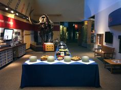 Host your next event at the Florida Museum!