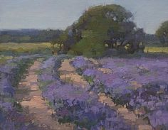 Kim Coulter, Oak and Lavender