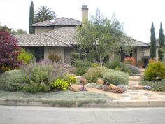 Front Yard Garden Design Layered landscape of Mediterranean plants California Native Garden, California Drought, Southern California, California Backyard, Drought Resistant Landscaping, Drought Tolerant Landscape, Landscape Plans, Landscape Design, Landscape Concept