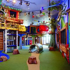 talk about the ultimate playroom , hope to give my kids this one day.