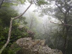 Die Appalachen - ein Mittelgebirge in den USA (picture alliance / dpa / Jim Lo Scalzo)