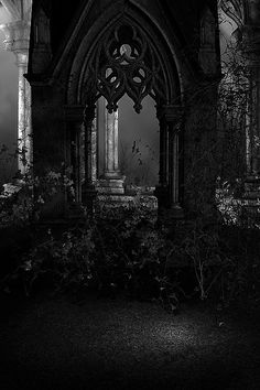 """A noose is hanging up above for me. I'll soon be bait for the fish in the sea. THE DEAD GAME Queen Aesthetic, Gothic Aesthetic, Slytherin Aesthetic, Black And White Aesthetic, Foto Fantasy, Dark Fantasy, Dark Gothic, Victorian Gothic, Dark Castle"