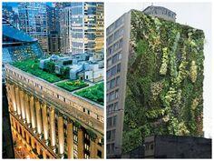 Telhados verdes e jardins verticais servirão como compensação ambiental em SP