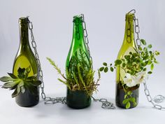Find Succulent Planter Made wine bottle online. Shop the latest collection of Succulent Planter Made wine bottle from the popular stores - all in one Wine Bottle Planter, Wine Bottle Crafts, Bottle Art, Wine Craft, Hydroponic Gardening, Hydroponics, Hanging Planters, Planter Pots, Wine Bottle Glasses