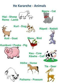 Animals Animal Activities, Preschool Activities, Multicultural Activities, Maori Songs, Bored At School, Waitangi Day, Describing Words, Learning Stories, Abc Poster