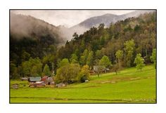 Townsend, TN  Beautiful Smoky Mountains...hope the leaves are turning this weekend!