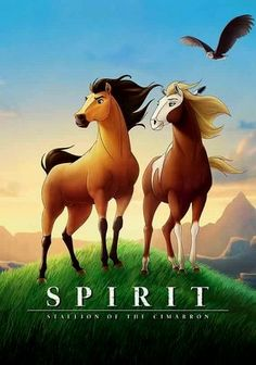 Spirit: Stallion of the Cimarron is an animation from Dreamworks, a story about a horse. Well, it's cute and all that but it's certainly not in the caliber of Shrek or other hits from Dreamworks. The storyline lacked depth and as good as Matt Damon may be, riding on his name along doesn't produce a hit. May be worth watching with kids who like westerns.