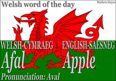 Welsh words with English translation and pronunciation. Learn Welsh, Welsh Words, Welsh Sayings, Welsh Phrases, Welsh Language, Language Lessons, Language Arts, Thinking Day, Cymru