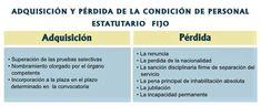 CELADORES ONLINE de INSTITUCIONES SANITARIAS: Estatuto Marco del Personal Estatutario de los Servicios de Salud Behind Bars, Meat, Nursing Notes, Mind Maps
