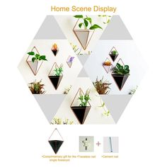 (The several wall flower containers can be placed to better decorate and beautify your room. for it free. Ceramic Wall Planters, Hanging Planters, Plant Wall, Plant Decor, Uk Plant, Faux Succulents, Planting Succulents, Geometric Flower, Geometric Wall
