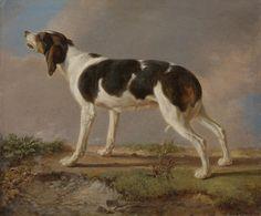 Jacques Laurent Agasse GENEVA 1767 - 1849 LONDON A HUNTING DOG