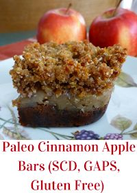 Paleo Cinnamon Apple Bars (gluten free, dairy free, grain free, SCD, GAPS)