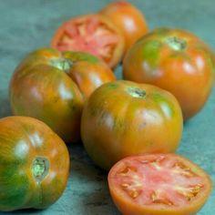 tomate de ensalada verano