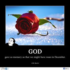 "God gave us memory so that we might have roses in December."" - James M. Barrie  http://on.fb.me/1dyiO2c  #funny #memory #quotes #funeral #funeralhome  ‪"