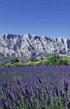 Aix-en-Provence.   JETZT bei Readly lesen:   France Magazine July 2016 - Seite 53