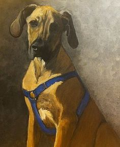 Painted pet portraits on canvas