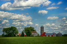 Summer Iowa Farm - A sunny and warm summer day at an Iowa Farm highlighting the rural beauty and the calm of a country life.
