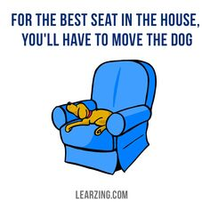 Where does your pet like to sleep? (If you have it, of course )  #dog #humor #pets #fridaythoughts