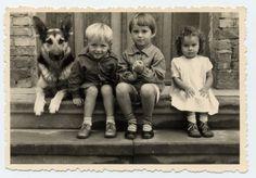 Foto toller Schnappschuss drei süsse Kinder Knabe Mädchen Deutscher Schäferhund