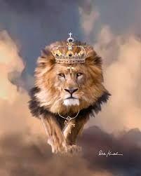 Image result for lion of judah