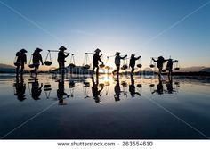 Foto, immagini e grafica d'archivio di Fattoria | Shutterstock
