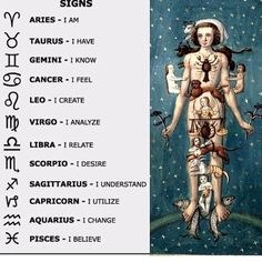 """I desire."" And it owns sex organs. Astrology Numerology, Astrology Zodiac, Zodiac Signs, Horoscope Signs, Numerology Chart, Tarot, Virgo Constellation Tattoo, Spirit Science, Taurus And Gemini"