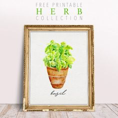 It's once again Free Printable Friday and I am pretty excited about this one because I happen to absolutely LOVE Herbs and we have a fabulous five piece Free Printable Herb Collection for you and we sooooo hope you enjoy them all! Instant Wall Art for the Kitchen or maybe a little accessory for a … Kitchen Herbs, Kitchen Art, Herb Wall, Printable Wall Art, Decor Styles, Farmhouse Decor, Free Printables, Planter Pots, Cottages