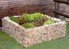 Gabion raised beds