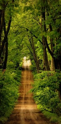 Tranquil country road in Latvia • photo: ssuunnddeeww on deviantart