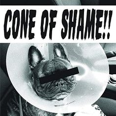 Sony Music Entertainment Faith No More - Cone Of Shame (Vinyl) Hard Rock, Soul Movie, Mike Patton, Album Of The Year, R&b Soul, How To Know, Rock Music, Revenge, Comebacks