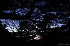 夕闇直前の紺空。