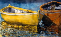 """yellow n orange  dories 26"""" x 40"""" micheal zarowsky watercolour on arches paper / private collection"""